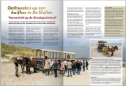 Voor het De Koog magazine 2018 heb ik veel foto's aangeleverd / My photos in the Koog magazine 2018 / http://dekoogtexel.nl