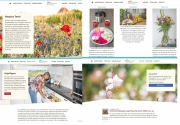 Website fotografie, Hospice Texel. https://hospicetexel.nl