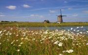 """Het landschap van Texel met Molen """"het Noorden"""" nabij buurtschap Oost op Texel / The landscape of Texel Mill """"The North"""" nearby township Oost on Texel"""