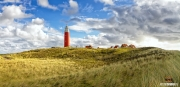 Vuurtoren van Texel in een prachig duinlandschap / Texel lighthouse in a beautiful dunelandscape