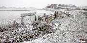 Winters Texel landschap / Winter landschape of Texel