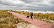 Wandelen met je hond langs het strand / Walking your dog along the beach