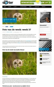 Foto van de week op Digifoto-Starter / Photo of the week at Digi Photo Starter / sept 2016