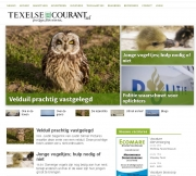 Velduil Op Texel / Short-eared Owl at Texel. Texelse Courant apr 2016