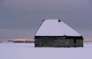 Schapenboet in de Sneeuw / Sheep Shelter in the Snow