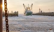 Kotter komt binnen in een winterse haven van Oudeschild / Vessel arrives  in a the harbour of Oudeschild . https://justinsinner.nl