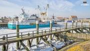 Havne van Oudeschild in de winter / harbour of Oudeschild in Winter. https://justinsinner.nl