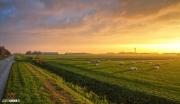 Mooie zonsopkomst boven het landschap van Texel / Stunning sunrise above the island of Texel